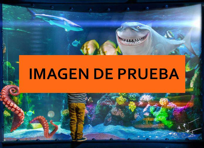 acuario7.jpg